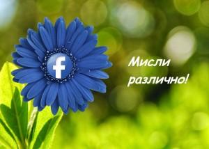 фейсбук промоция, Smart Online